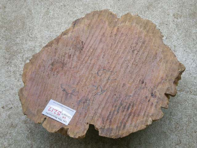 Coolibah Burl 19 x 16 x 4.5 (inches)
