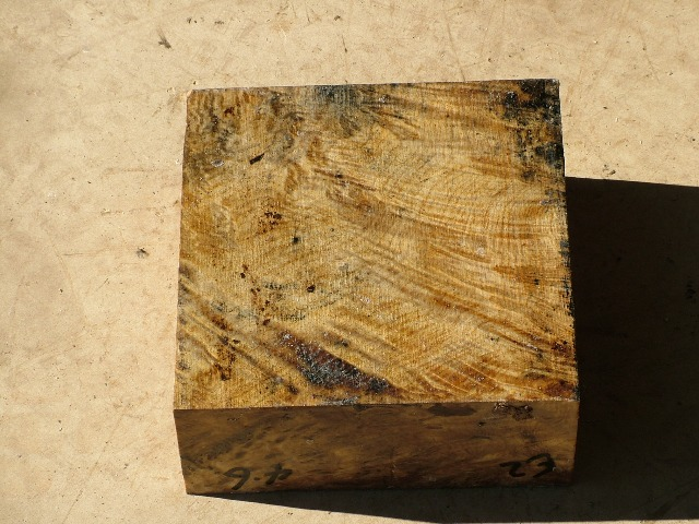 Euc Burl 8 x 8 x 3 (inches)