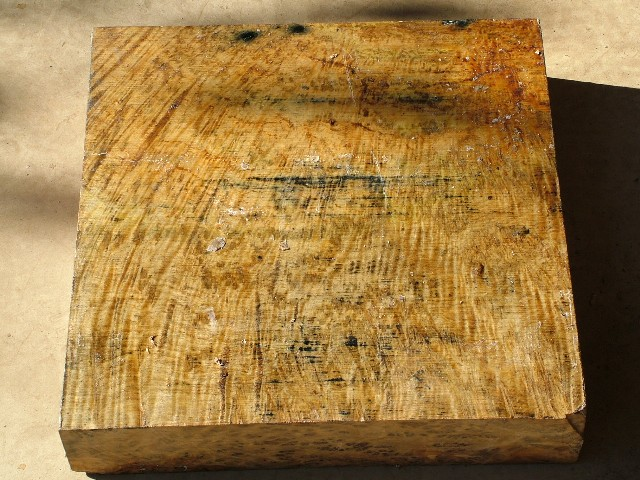 Euc Burl 16 x 16 x 3 (inches)