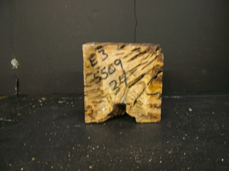 White Top Burl Cut Block (5.25 x 5.5 x 3.25)
