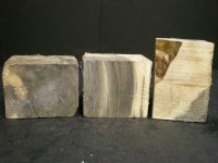 Buckeye Burl Wine Stopper Blanks