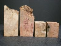 Rose Mrytle Burl Wine Stopper Blanks