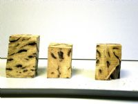 White Top Burl Wine Stopper Blanks